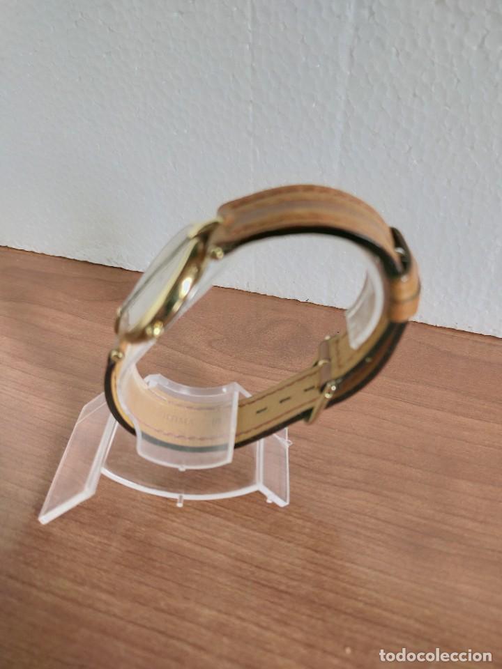 Relojes - Longines: Reloj unisex LONGINES RODOLPHE chapado de oro, esfera color champan, correa de cuero marrón. - Foto 12 - 213384307