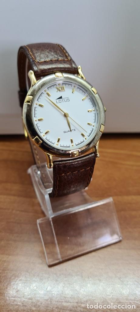 Relojes - Lotus: Reloj unisex cuarzo LOTUS en acero bicolor, esfera blanca, agujas chapadas oro, correa marrón nueva. - Foto 3 - 253556950