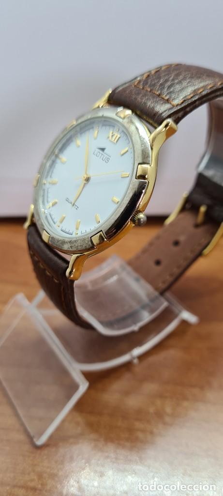 Relojes - Lotus: Reloj unisex cuarzo LOTUS en acero bicolor, esfera blanca, agujas chapadas oro, correa marrón nueva. - Foto 4 - 253556950