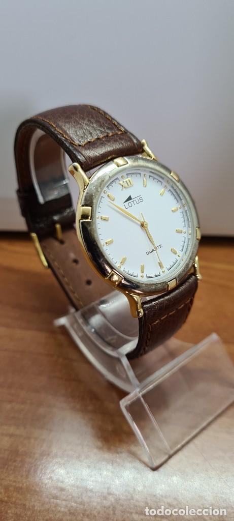Relojes - Lotus: Reloj unisex cuarzo LOTUS en acero bicolor, esfera blanca, agujas chapadas oro, correa marrón nueva. - Foto 5 - 253556950