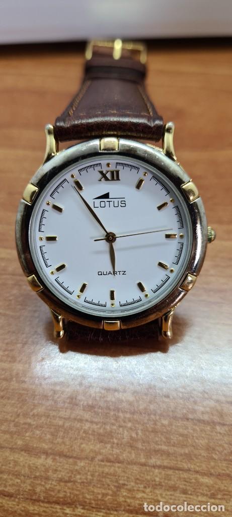 Relojes - Lotus: Reloj unisex cuarzo LOTUS en acero bicolor, esfera blanca, agujas chapadas oro, correa marrón nueva. - Foto 12 - 253556950
