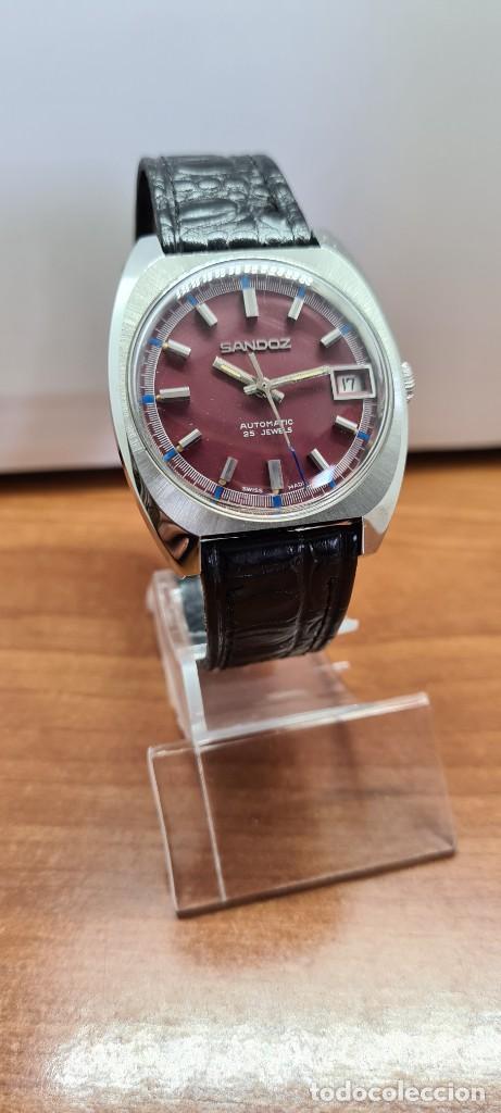Relojes - Sandox: Reloj caballero (Vintage) SANDOZ automático en acero, esfera color vino calendario a las tres correa - Foto 3 - 253657950