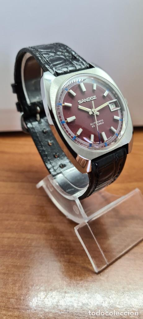 Relojes - Sandox: Reloj caballero (Vintage) SANDOZ automático en acero, esfera color vino calendario a las tres correa - Foto 5 - 253657950
