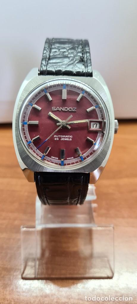 Relojes - Sandox: Reloj caballero (Vintage) SANDOZ automático en acero, esfera color vino calendario a las tres correa - Foto 8 - 253657950