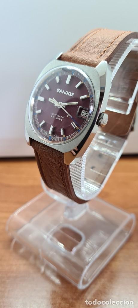 Relojes - Sandox: Reloj caballero (Vintage) SANDOZ automático en acero, esfera color vino calendario a las tres correa - Foto 5 - 255418630