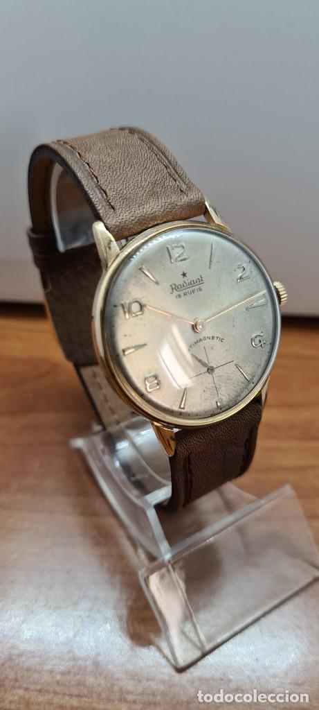 Relojes: Reloj caballero (Vintage) RADIANT, cuerda chapado oro, esfera blanca con segundero las seis, correa - Foto 6 - 257977085