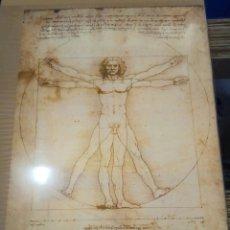 Coleccionismo de carteles: PÓSTER LEONARDO DA VINCI. Lote 194755288