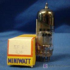 Radios antiguas - ANTÍGUA VÁLVULA /TUBE/ LAMPARA MINIWATT EF 80 - NUEVA - 22019127