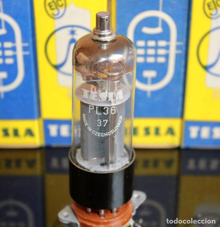 PL36 - TESLA - VALVULA ( ELECTRONIC TUBE ) NOS - BOXED (Radios, Gramófonos, Grabadoras y Otros - Repuestos y Lámparas a Válvulas)