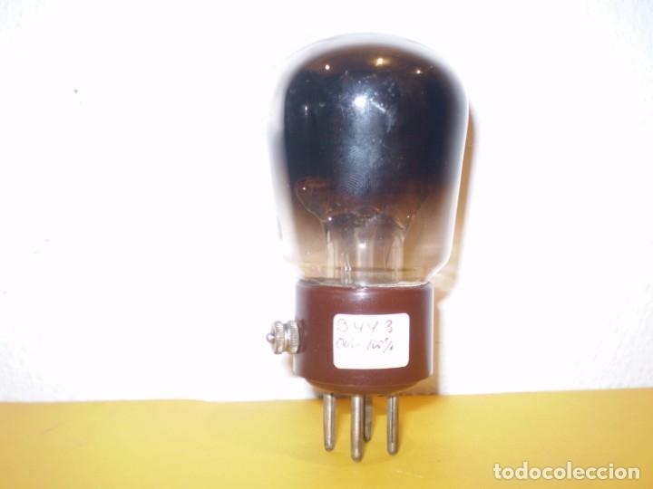 VALVULA B443-PHILIPS-USADA Y PROBADA AL100%.. (Radios, Gramófonos, Grabadoras y Otros - Repuestos y Lámparas a Válvulas)