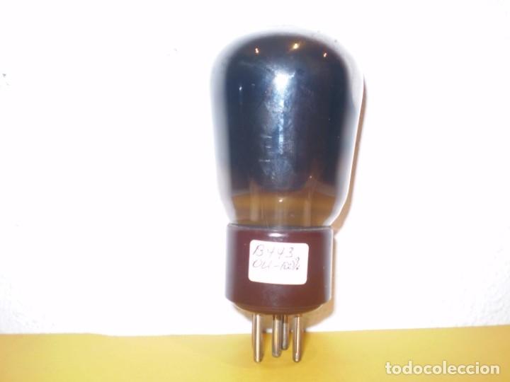 VALVULA B443-PHILIPS-5 PINES-USADA Y PROBADA AL100%.. (Radios, Gramófonos, Grabadoras y Otros - Repuestos y Lámparas a Válvulas)