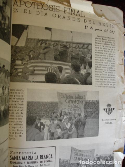 Coleccionismo deportivo: EL BETIS CAMPEON HOMENAJE ASCENSO A PRIMERA 1957-58.GRAN FOLIO FOTOS BUEN ESTADO EN GENERAL - Foto 5 - 80445873