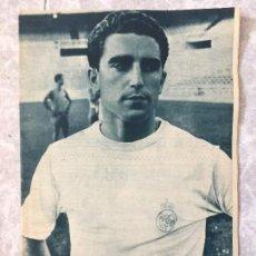 Coleccionismo deportivo: REVISTA REAL MADRID DE FUTBOL EMILIO MOROLLÓN JUGADOR DEL REAL MADRID SEPTIEMBRE DE 1964 Nº 172. Lote 118146855