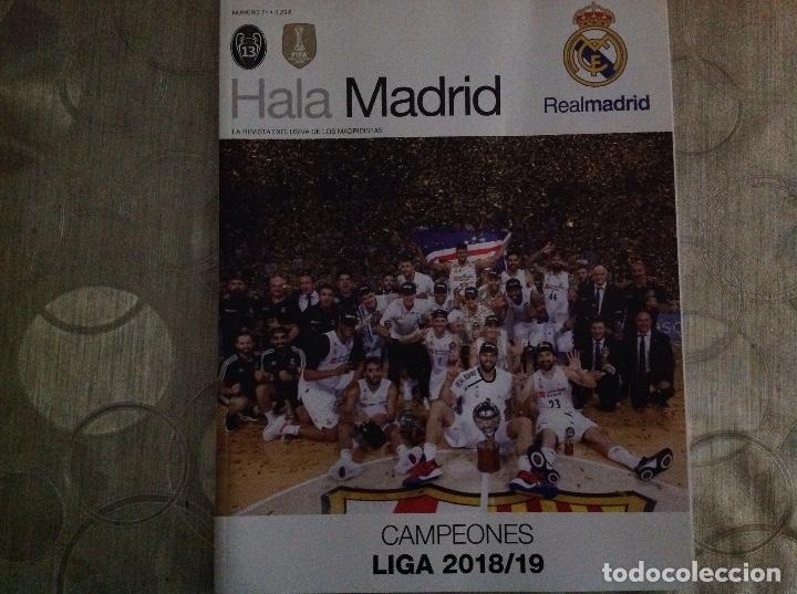 REVISTA: HALA MADRID. REAL MADRID. NUMERO 71.ACM (Coleccionismo Deportivo - Revistas y Periódicos - otros Fútbol)