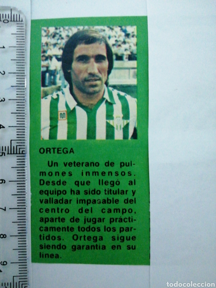 (RECORTE PRENSA ANTIGUO)JUGADOR DEL REAL BETIS VETERANO ORTEGA (Coleccionismo Deportivo - Revistas y Periódicos - otros Fútbol)