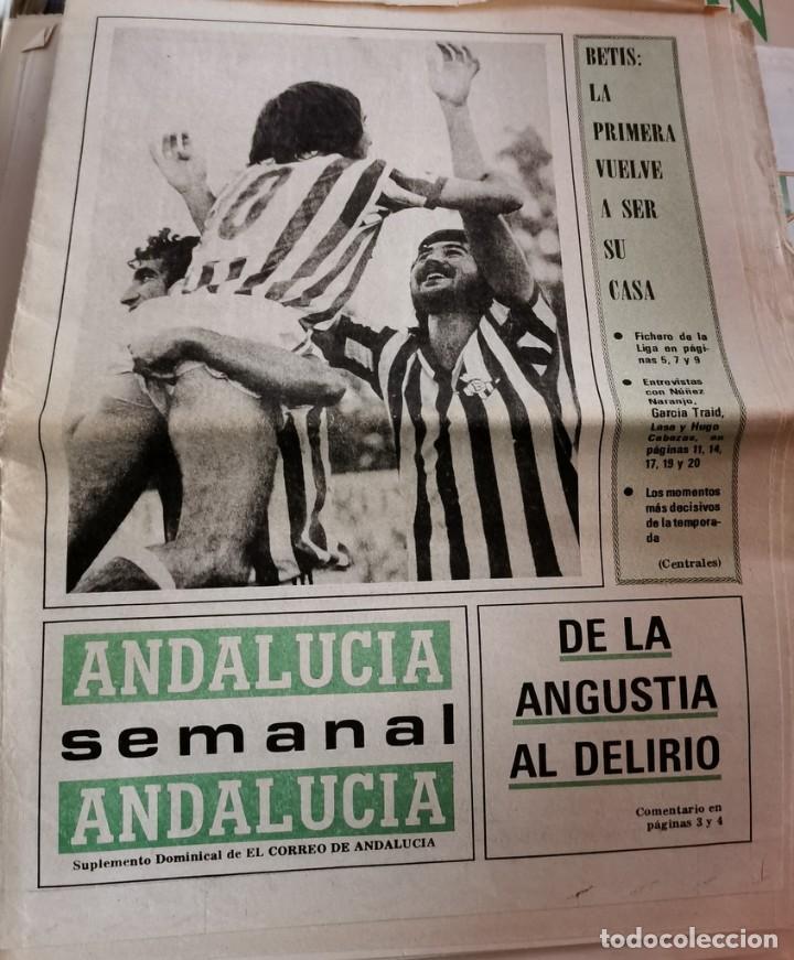 EL CORREO DE ANDALUCIA, SUPLEMENTO, 24 JUNIO 1979, ASCENSO REAL BETIS (Coleccionismo Deportivo - Revistas y Periódicos - otros Fútbol)
