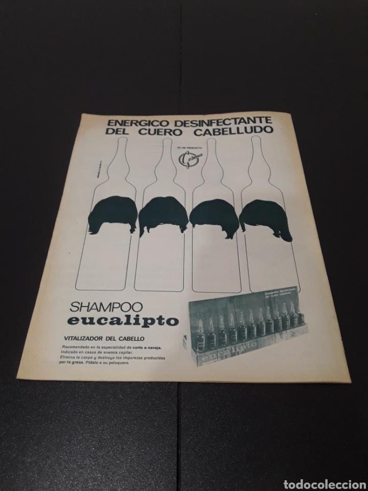 Coleccionismo deportivo: REVISTA BARÇA. N° 570. OCTUBRE 1966. - Foto 13 - 245384335