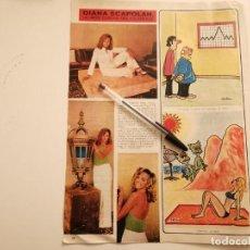Coleccionismo deportivo: DIANA SCAPOLAN MISS EUROPA 1973 REVERSO PEPE RUBIO ABOFETEADO POR MARIAN CONDE RECORTE REVISTA 1973. Lote 262325710