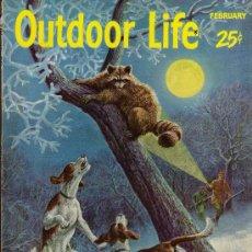 Coleccionismo deportivo: REVISTA DE CAZA Y PESCA OUTDOOR LIFE - FEBRUARY 1955 - EN INGLES. Lote 10884290