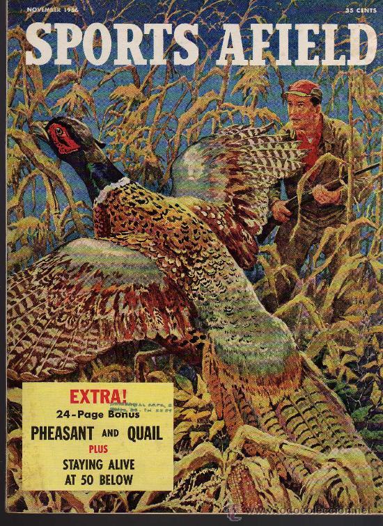 REVISTA DE CAZA Y PESCA SPORTS AFIELD - NOVEMBER 1956 - EN INGLES (Coleccionismo Deportivo - Revistas y Periódicos - otros Deportes)