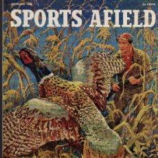 Coleccionismo deportivo: REVISTA DE CAZA Y PESCA SPORTS AFIELD - NOVEMBER 1956 - EN INGLES. Lote 10884292