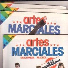 Coleccionismo deportivo: ENCICLOPEDIA PRACTICA ARTES MARCIALES - LOTE 7 FASCICULOS , CON POSTER DESPLEGABLE. Lote 21900436