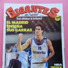 Coleccionismo deportivo: REVISTA GIGANTES DEL BASKET Nº 280 1991 REAL MADRID FINAL KORAC-ORENGA-POSTER ARCEGA CAI-HARDAWAY. Lote 47370789