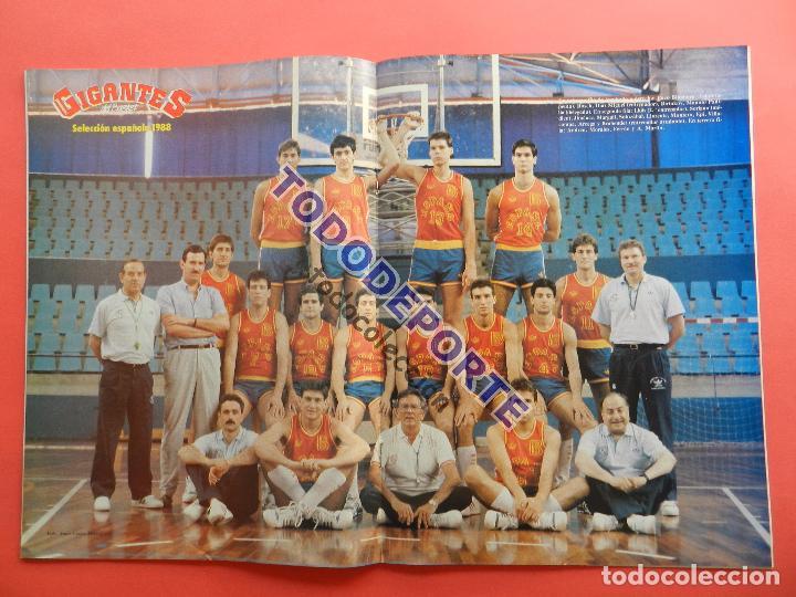 Coleccionismo deportivo: REVISTA GIGANTES DEL BASKET 136 PEGATINA GIGANTE Nº 5 LARRY BIRD CELTICS NBA-STICKER-CROMO-POSTER - Foto 3 - 80067861
