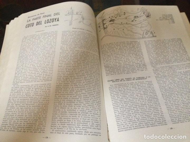 Coleccionismo deportivo: Caza y pesca febrero 1966 núm 278 - Foto 5 - 84475942