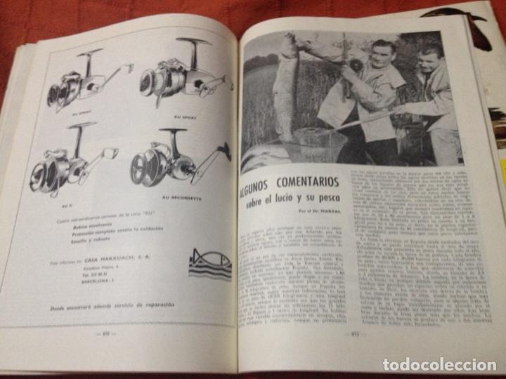Coleccionismo deportivo: Caza y pesca nov 1967 núm 299 - Foto 5 - 84476282