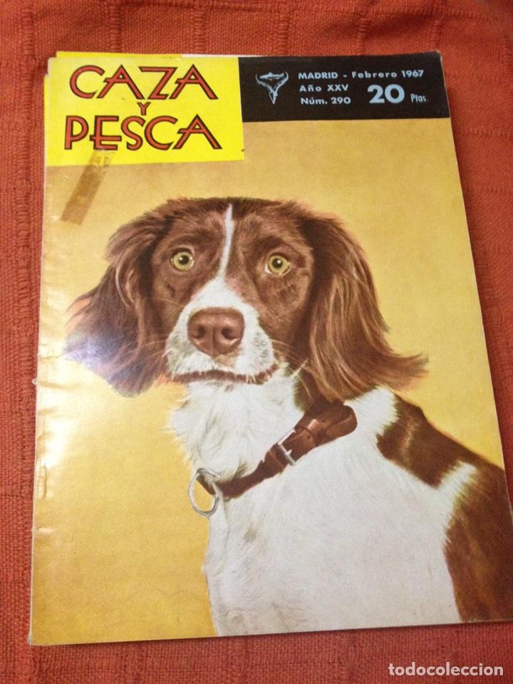 CAZA Y PESCA FEBRERO 1967 NÚM 290 (Coleccionismo Deportivo - Revistas y Periódicos - otros Deportes)