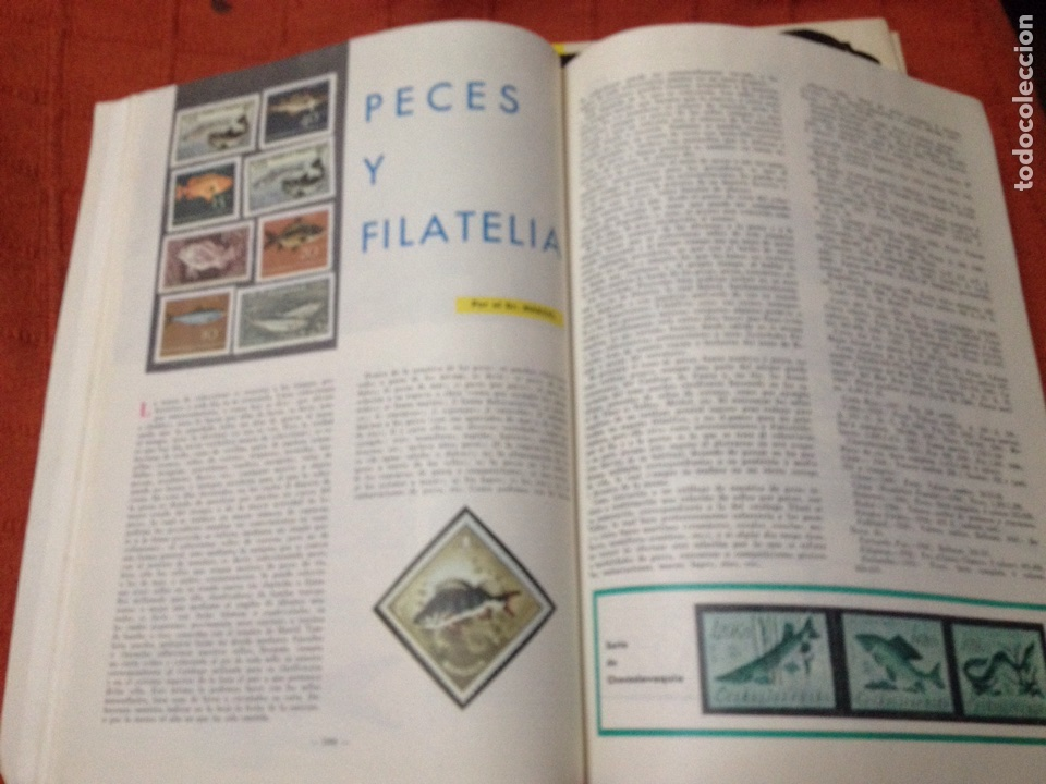 Coleccionismo deportivo: Caza y pesca diciembre 1968 núm 312 - Foto 5 - 84476691