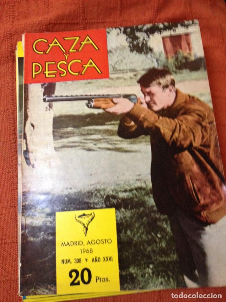 CAZA Y PESCA AGOSTO 1968 NÚM 308 (Coleccionismo Deportivo - Revistas y Periódicos - otros Deportes)