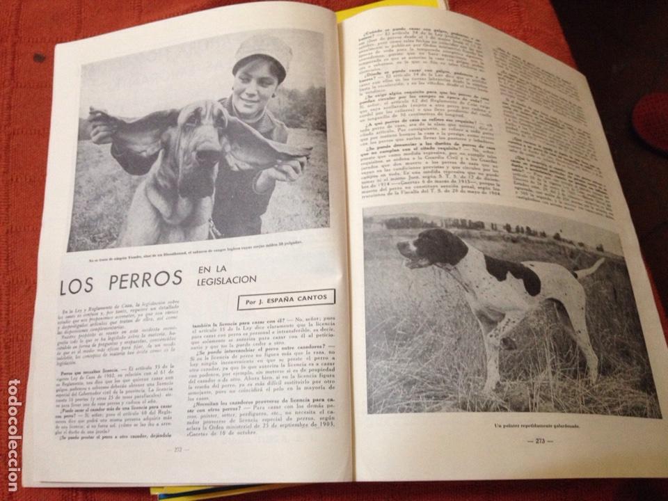 Coleccionismo deportivo: Caza y pesca abril 1968 núm 304 - Foto 3 - 84477440