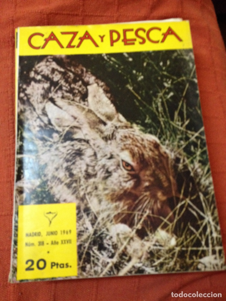 CAZA Y PESCA JUNIO 1969 NÚM 318 (Coleccionismo Deportivo - Revistas y Periódicos - otros Deportes)