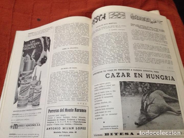 Coleccionismo deportivo: Caza y pesca junio 1969 núm 318 - Foto 3 - 84478184