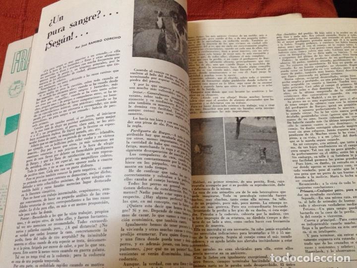 Coleccionismo deportivo: Caza y pesca junio 1969 núm 318 - Foto 4 - 84478184