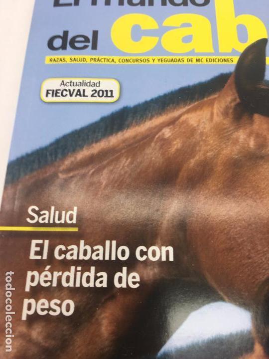 Coleccionismo deportivo: REVISTA EL MUNDO DEL CABALLO - 10º ANIVERSARIO - Nº123 - Foto 3 - 108398463