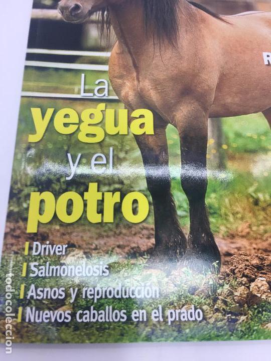 Coleccionismo deportivo: REVISTA EL MUNDO DEL CABALLO - Nº 86 - Foto 3 - 108399219