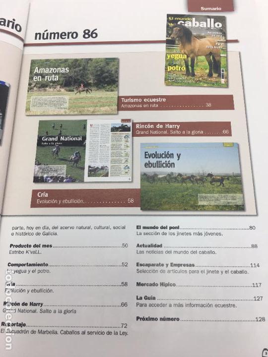 Coleccionismo deportivo: REVISTA EL MUNDO DEL CABALLO - Nº 86 - Foto 5 - 108399219