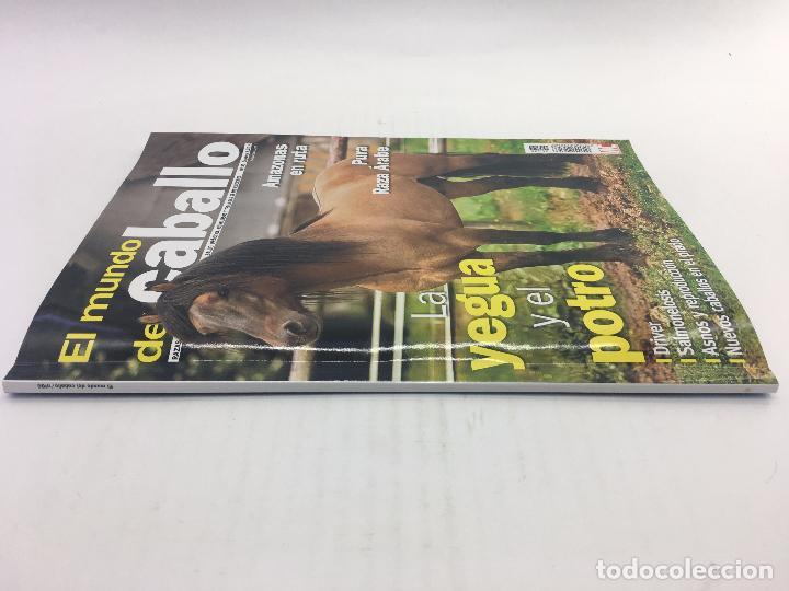 Coleccionismo deportivo: REVISTA EL MUNDO DEL CABALLO - Nº 86 - Foto 6 - 108399219