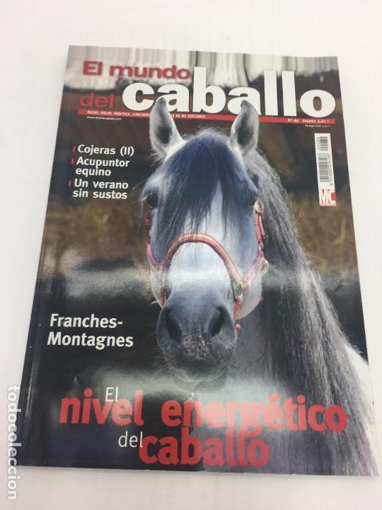 REVISTA EL MUNDO DEL CABALLO - Nº 89 (Coleccionismo Deportivo - Revistas y Periódicos - otros Deportes)