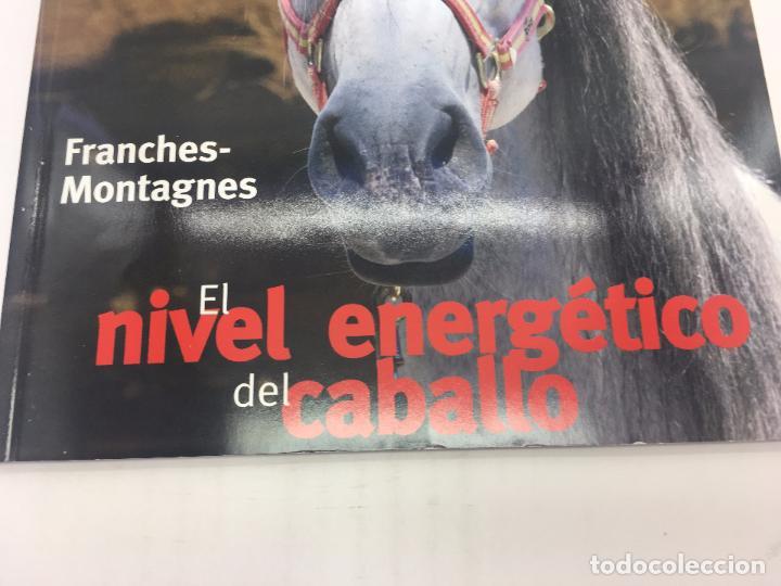 Coleccionismo deportivo: REVISTA EL MUNDO DEL CABALLO - Nº 89 - Foto 4 - 108399479