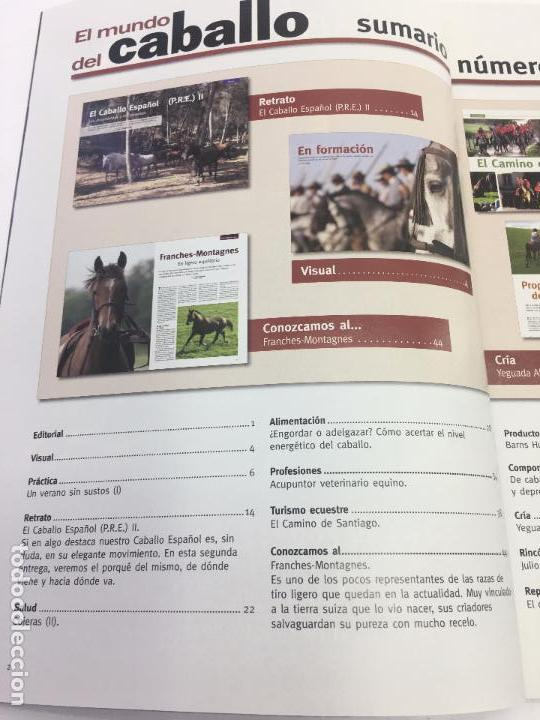 Coleccionismo deportivo: REVISTA EL MUNDO DEL CABALLO - Nº 89 - Foto 5 - 108399479