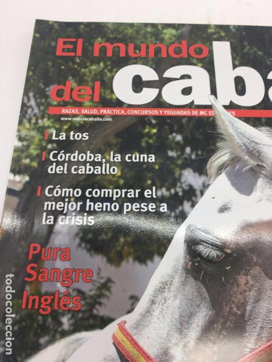 Coleccionismo deportivo: REVISTA EL MUNDO DEL CABALLO - Nº 91 - Foto 3 - 108400167