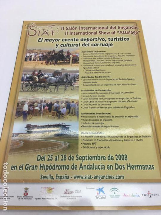 Coleccionismo deportivo: REVISTA EL MUNDO DEL CABALLO - Nº 91 - Foto 8 - 108400167