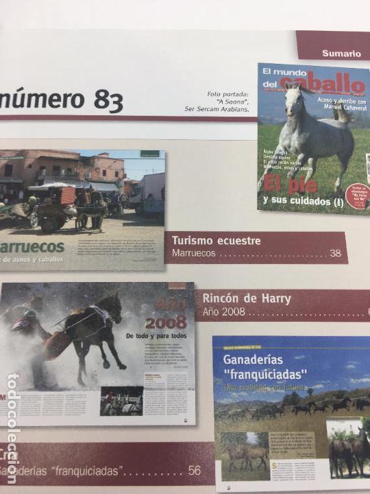 Coleccionismo deportivo: REVISTA EL MUNDO DEL CABALLO - Nº 83 - Foto 6 - 108400775
