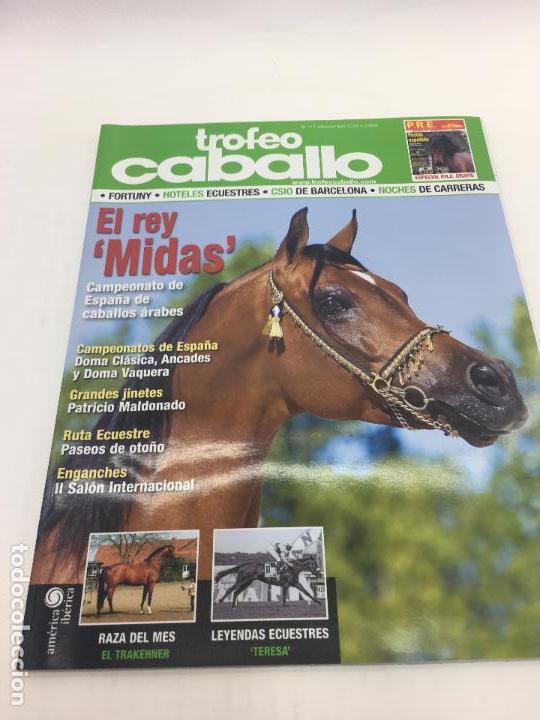REVISTA TROFEO CABALLO - Nº 111 - NOVIEMBRE 2008 (Coleccionismo Deportivo - Revistas y Periódicos - otros Deportes)