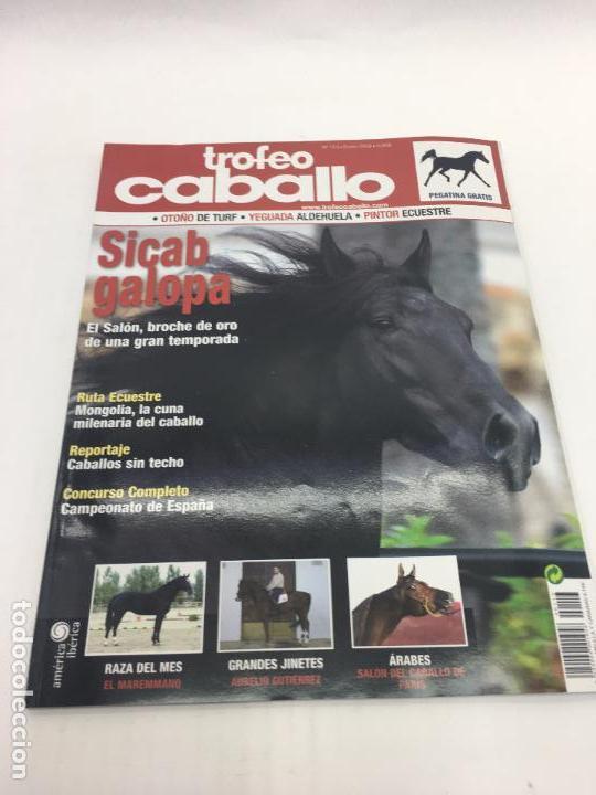 REVISTA TROFEO CABALLO - Nº 113 - ENERO 2009 (Coleccionismo Deportivo - Revistas y Periódicos - otros Deportes)