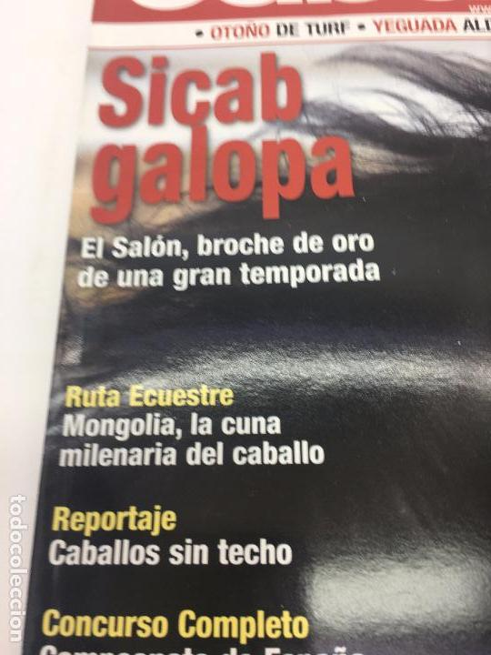 Coleccionismo deportivo: REVISTA TROFEO CABALLO - Nº 113 - ENERO 2009 - Foto 3 - 108404363